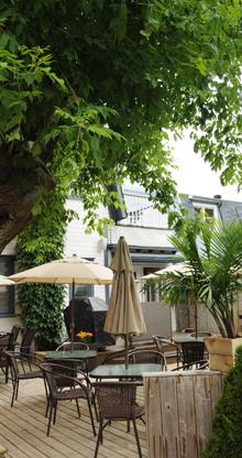 terrasse-arbre
